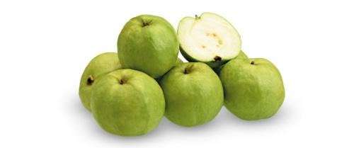 Guava Crysta atau Jambu Biji, Courtesy: http://www.sunpride.co.id/
