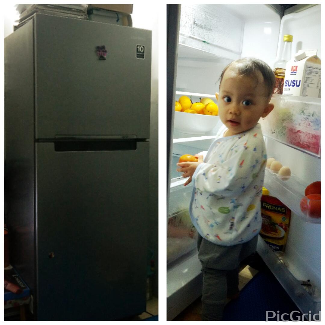 Samsung Kulkas 2 Pintu Top Freezer Rt20farwdsa Silver Khusus 203l Doors Digital Inverter Si Mommy Friendly