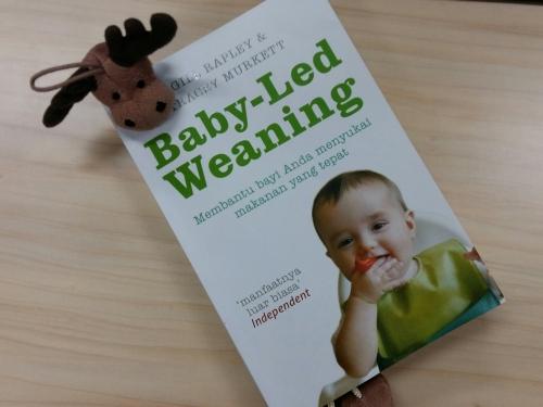 Baby-Led Weaning oleh Gill Rapley dan Tracey Murkett